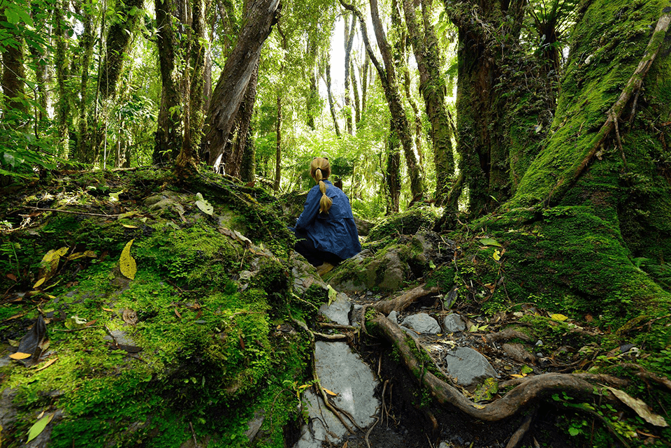 Woman in a blue shirt crouching the in green forests of Fiordland National Park.