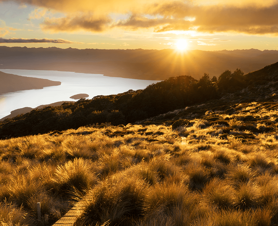 View from Mount luxmore looking across tussock land towards the rising sun over Lake Te Anau in the east.