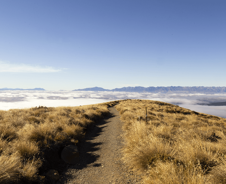 A hiking trail through barren tussock land atop a mountain with the clouds below.